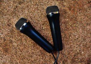 זמרים זמרות ליום אחד